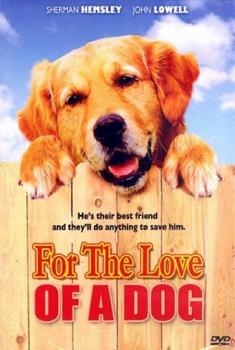 Per amore di un cane (2008)