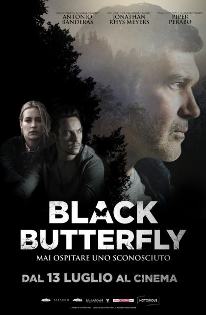 Black Butterfly Stream