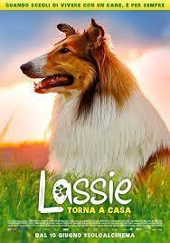 Lassie torna a casa (2021)